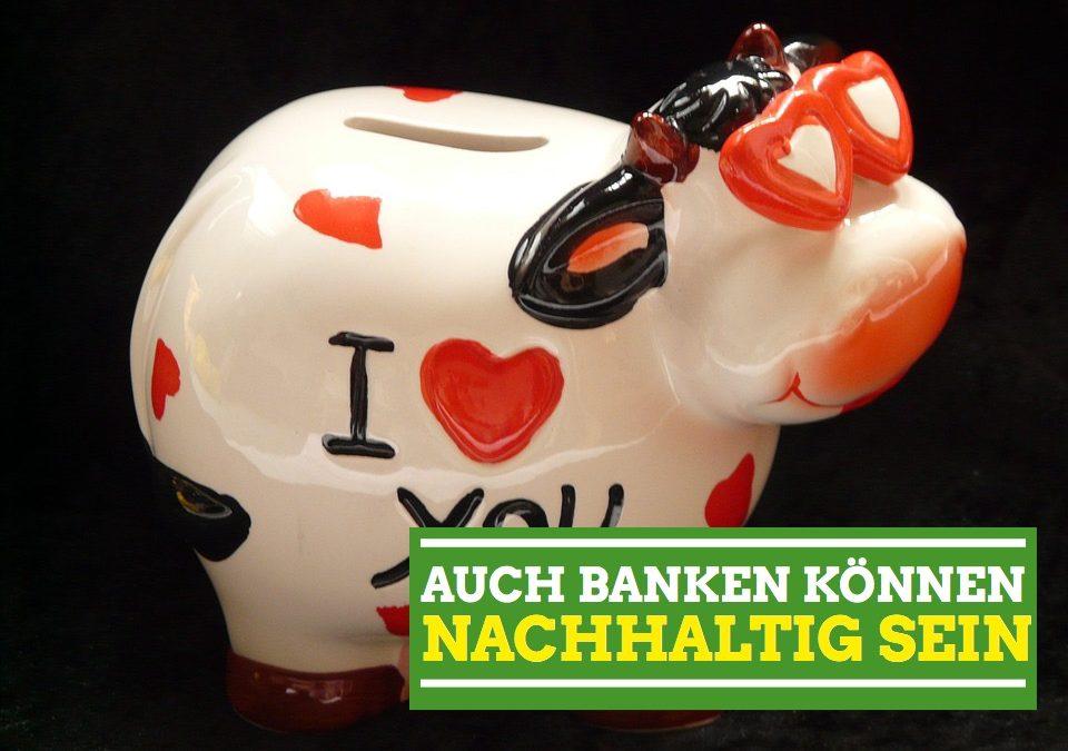 Analyse: Genossenschaftsbanken und Sparkassen – die ideale Finanzwende?